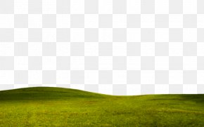 Grass Border Texture E Net Material Library - Grassland Meadow Lawn PNG