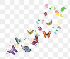 Butterfly - Download Spring Illustration PNG