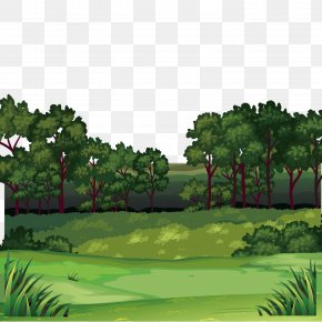 Jungle Scenery - Forest Clip Art PNG