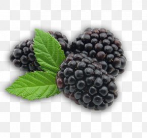 Blackberry Fruit Transparent - BlackBerry Fruit PNG