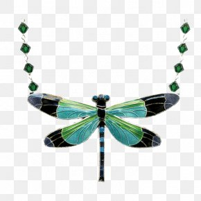 Jewellery - Jewellery Earring Necklace Charms & Pendants Cloisonné PNG
