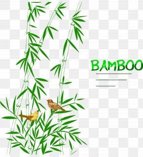 Bamboo Bird Decoration - Bamboo Bird Drawing Trees PNG