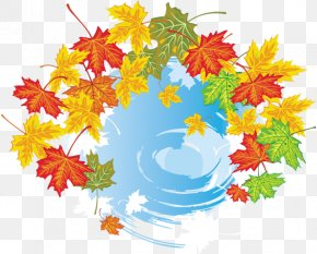 Autumn Leaves - Maple Leaf Autumn Leaves Clip Art Graphics PNG