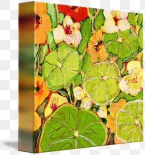 Leaf - Gallery Wrap Canvas Leaf Art Herb PNG