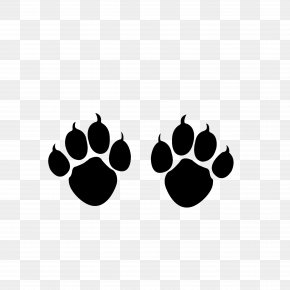 A Sharp Cat Claw - Cat Paw Kitten Claw PNG
