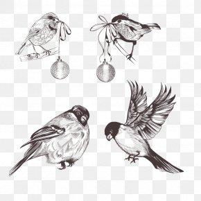 Vector Little Sparrow - Bird Sparrow Euclidean Vector Feather PNG