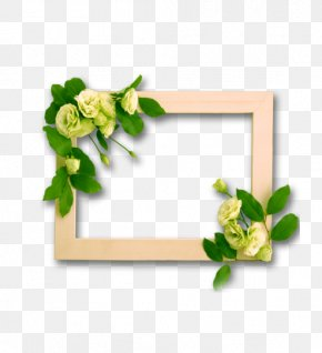 Creative Wood Frame Border - Picture Frame PNG