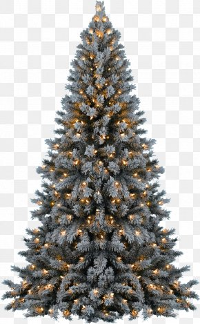 Christmas Tree Transparent - Christmas Tree PNG