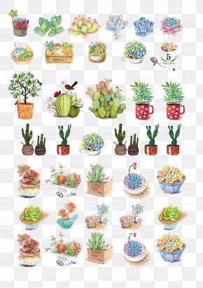 Plant - Flowerpot Download PNG