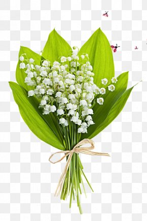Flower Pattern - Lily Of The Valley Flower Bouquet Stock Photography Perfume PNG