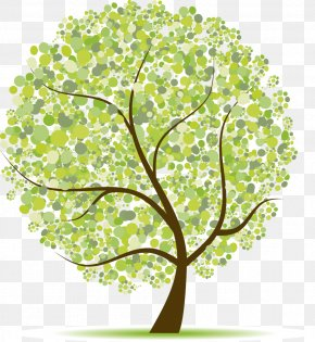 Tree Collection - Vector Graphics Royalty-free Clip Art Stock Photography Image PNG