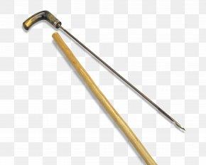 CANE TREE - Walking Stick Tool Assistive Cane Bastone Handle PNG