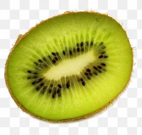 Kiwi Free Download - Kiwifruit Clip Art PNG