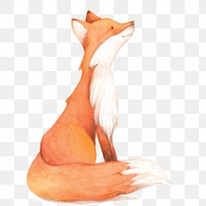 Watercolor Fox PNG