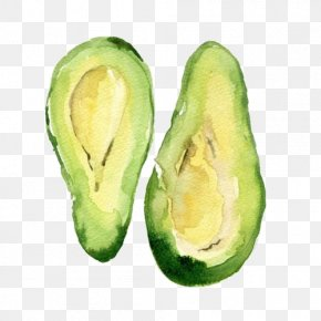 Avocado - Avocado Watercolor Painting Drawing Food PNG