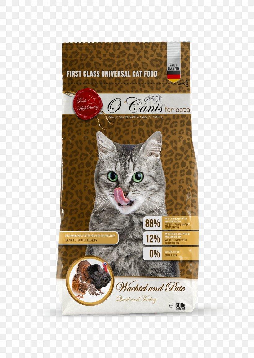 Cat Food Whiskers Kitten Ocanis Deutschland Gmbh Png 1417x2000px Cat Animal Cat Food Cat Like Mammal