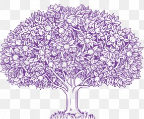 Apple Tree - Vector Graphics Stock Illustration Drawing Clip Art PNG