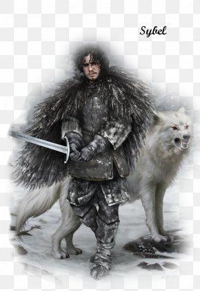 Jon Snow - Jon Snow Daenerys Targaryen Arya Stark Winter Is Coming A Song Of Ice And Fire PNG