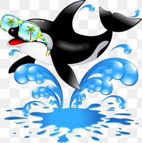 Dolphin - Killer Whale Cetacea Clip Art PNG
