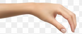 Human Hand Clipart Picture - Hand Clip Art PNG