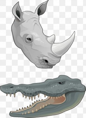 Two Kinds Of Amphibians - Rhinoceros Horn Euclidean Vector Animal PNG