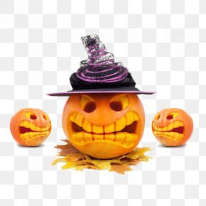 Pumpkin - Halloween Jack-o'-lantern Stock Photography Cucurbita Shutterstock PNG