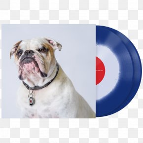 Vinyl Cover - Dorset Olde Tyme Bulldogge American Bulldog Olde English Bulldogge Serato Audio Research Vinyl Emulation Software PNG