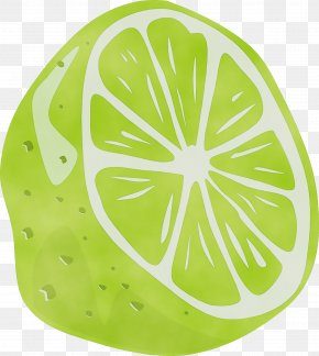 Lemon Fruit - Green Leaf Citrus Plant Clip Art PNG