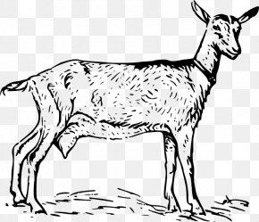 Goat - Goat Download Clip Art PNG