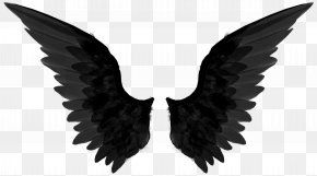 Black Wings - Castiel Dean Winchester Sam Winchester Angel T-shirt PNG