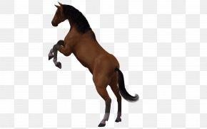 Horse Pattern Horse Painted Image - Horse 3D Computer Graphics Mane Clip Art PNG