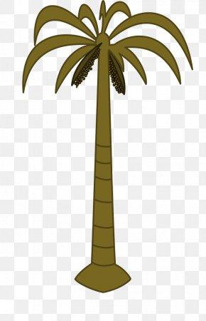 Coconut - Arecaceae Coconut Date Palm Tree Clip Art PNG
