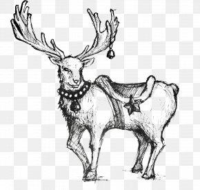 Hand-painted Christmas Deer - Reindeer Rudolph Christmas Red Deer PNG