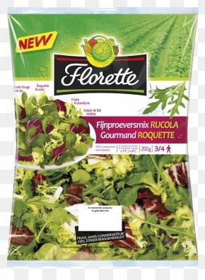 Salad - Spring Greens Vegetarian Cuisine Romaine Lettuce Herb PNG