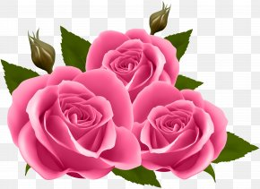 Pink Roses Clip Art Image - Rose Purple Flower Clip Art PNG