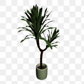 Pot Plant - Yucca Filamentosa Houseplant Plant Stem Flowerpot PNG
