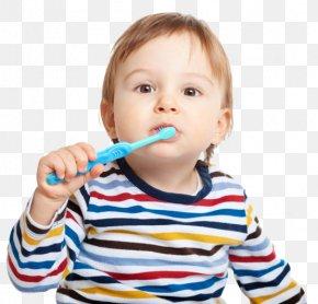 Toothbrush - Electric Toothbrush Tooth Brushing Human Tooth PNG
