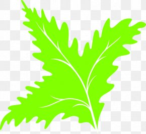 Green Leaf Icon - Leaf Green Clip Art PNG
