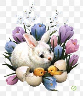 Easter - Easter Bunny Desktop Wallpaper Easter Egg Egg Hunt PNG