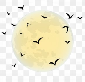 Halloween Moon Clip Art Image - By The Light Of The Halloween Moon Black Moon PNG