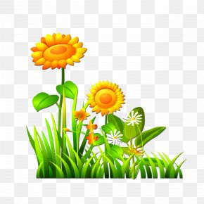 Sunflower - Computer File PNG