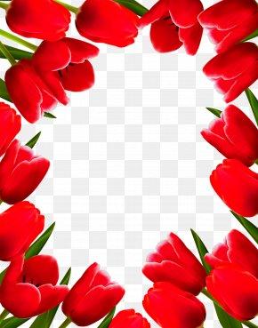 Tulip Border - Tulip Flower Picture Frame Clip Art PNG