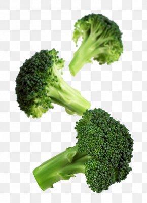 Broccoli - Romanesco Broccoli Cauliflower Vegetable Cabbage PNG
