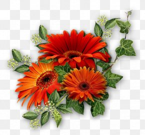 Red Chrysanthemum Free To Pull The Material - Flower Bouquet Chrysanthemum Lilium PNG