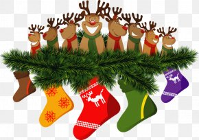Santa Claus - Rudolph Santa Claus Reindeer Christmas Day PNG