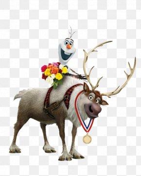 Olaf - Elsa Kristoff Anna Olaf PNG