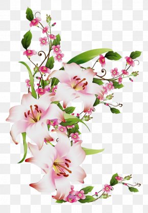 Blossom Bouquet - Flower Flowering Plant Plant Cut Flowers Pink PNG