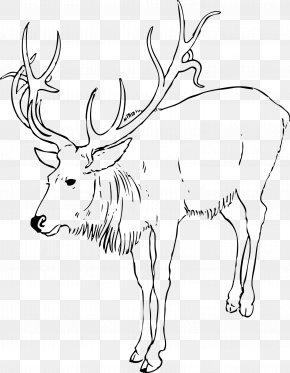 Reindeer - Reindeer Rudolph Moose Clip Art PNG