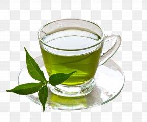 Cup Of Green Tea - Green Tea Coffee Herbal Tea Drink PNG