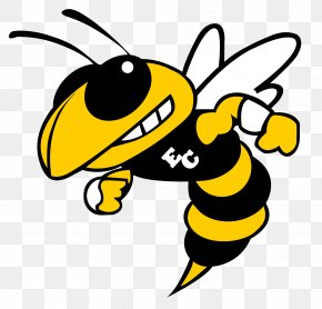 School Logo - Hinsdale South High School Charlotte Hornets Sport High School Football Basketball PNG